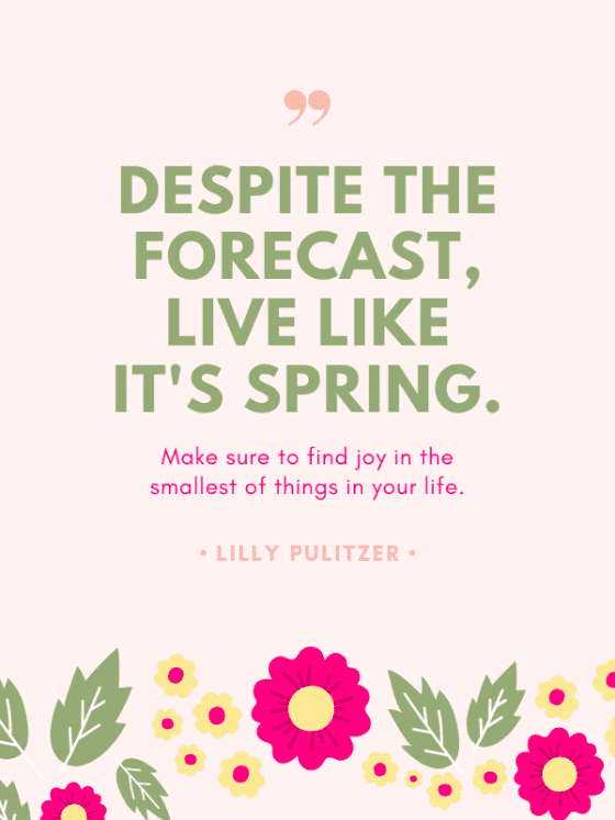 motivational quote for download-Lilly Pulitzer- by wandalopezdesigns