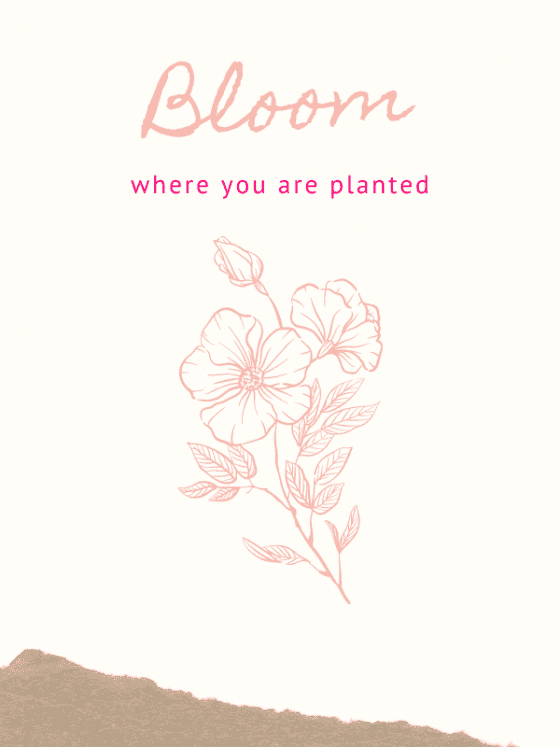 motivational quote for download-Bloom where you are planted- by wandalopezdesigns