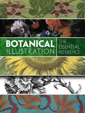 Botanical-Illustration:-The-Essential-Reference-book-for-artists